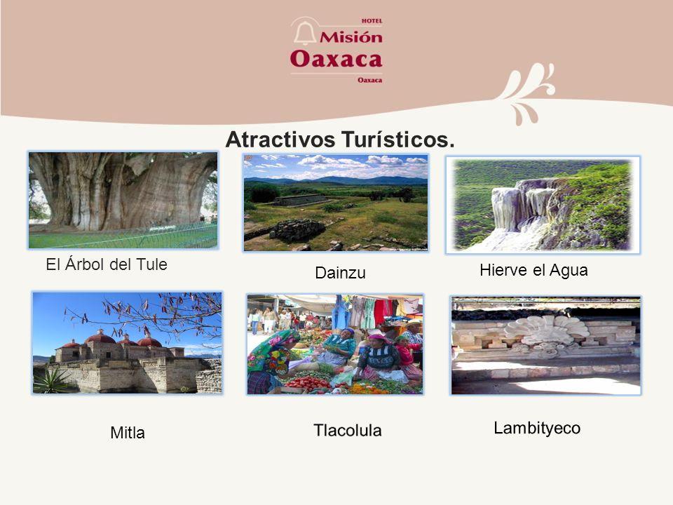 Atractivos Turísticos. El Árbol del Tule Dainzu Hierve el Agua Mitla