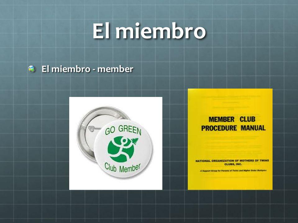 El miembro El miembro - member