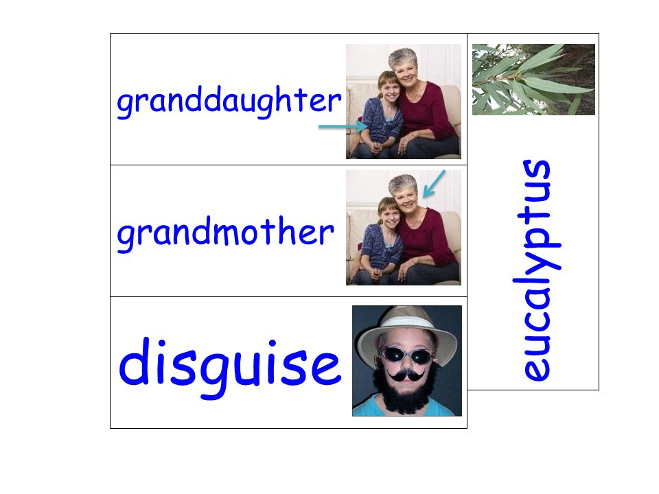 grandmother eucalyptus disguise granddaughter
