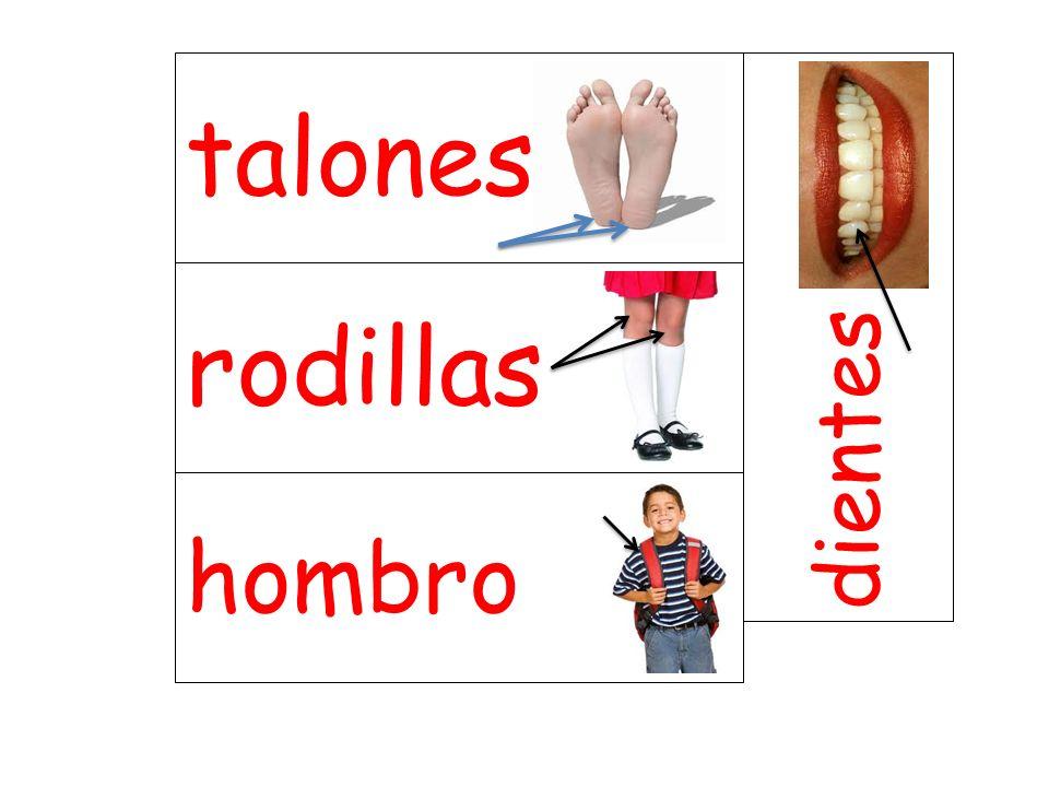 rodillas dientes hombro talones
