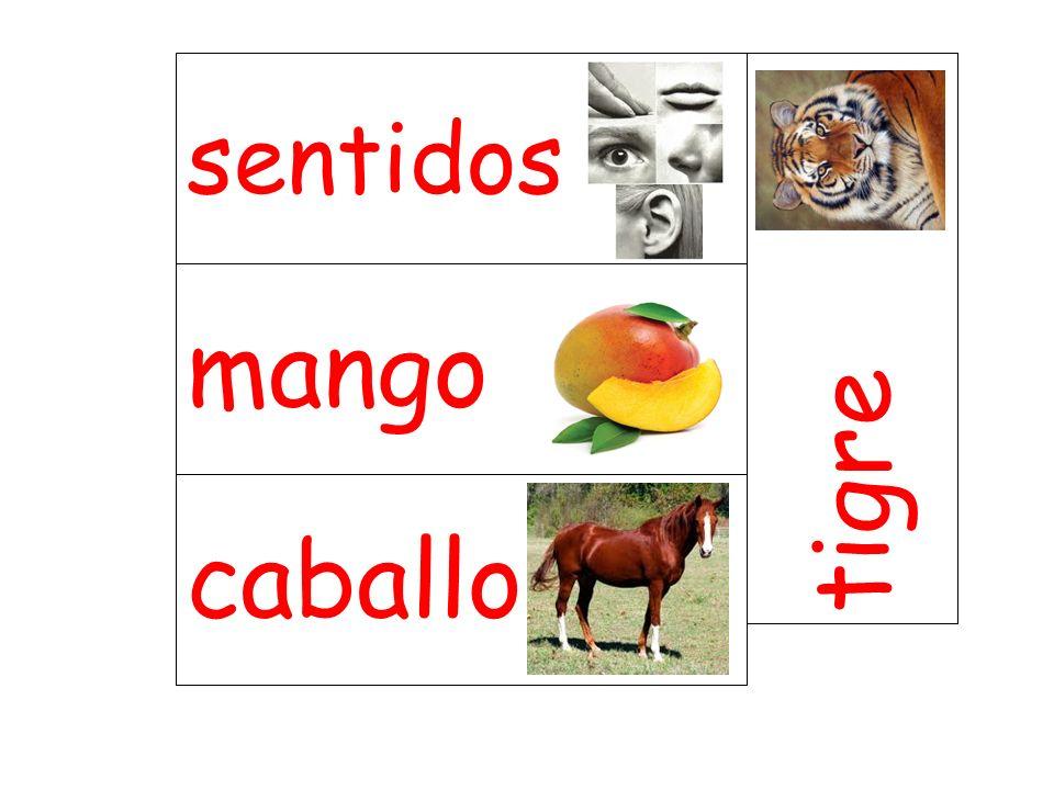 mango tigre caballo sentidos