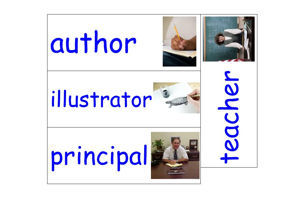 illustrator teacher principal author