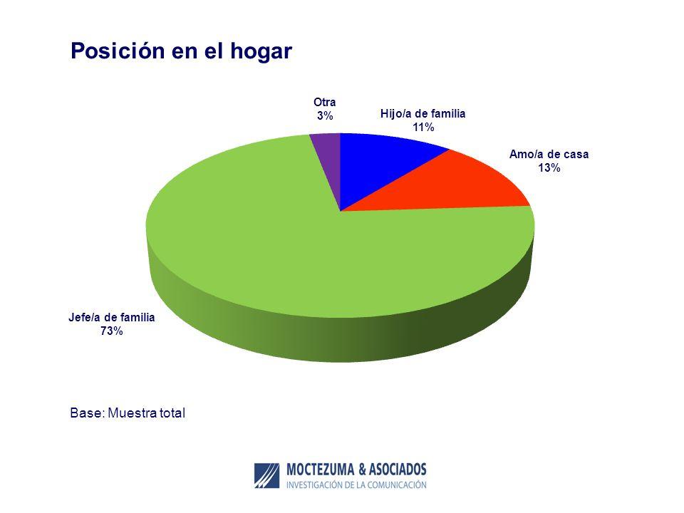 Base: Muestra total Posición en el hogar Hijo/a de familia 11% Amo/a de casa 13% Jefe/a de familia 73% Otra 3%