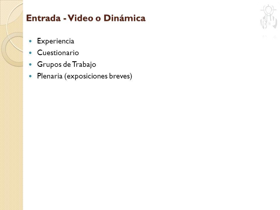 Entrada - Video o Dinámica Experiencia Cuestionario Grupos de Trabajo Plenaria (exposiciones breves)