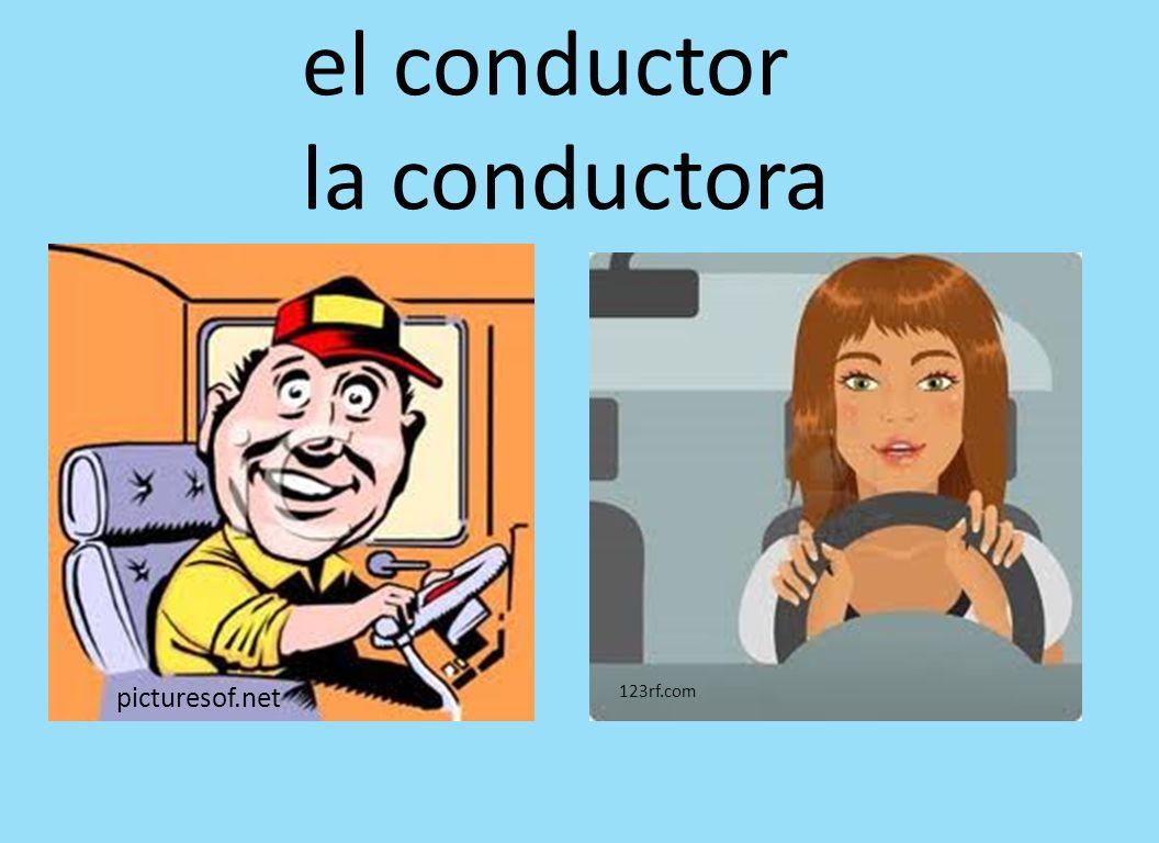 picturesof.net 123rf.com el conductor la conductora
