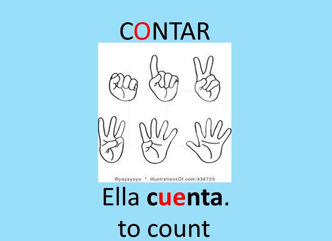 CONTAR Ella cuenta. to count