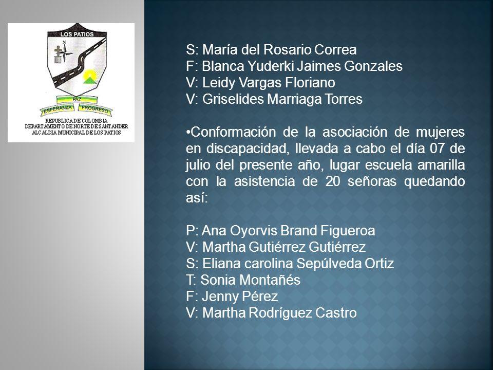 Diseño y socialización del plan de acción año 2010 segundo semestre del comité de mujeres al día 14 de julio con la participación de 25 mujeres de los diferentes sectores del municipio, anexo: acta.