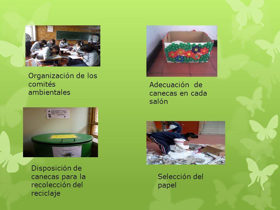 Organización de los comités ambientales Adecuación de canecas en cada salón Disposición de canecas para la recolección del reciclaje Selección del pap