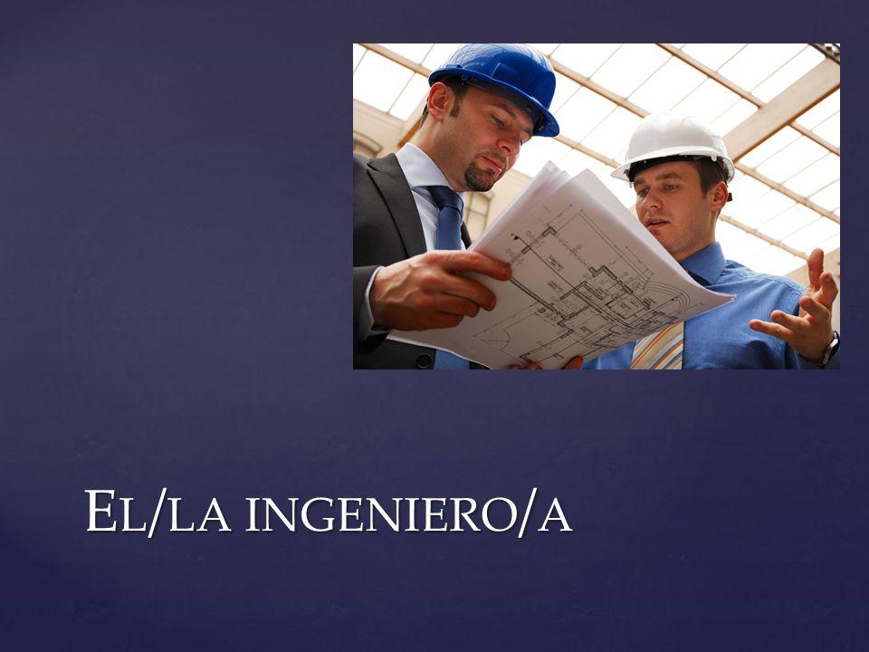 E L / LA INGENIERO / A