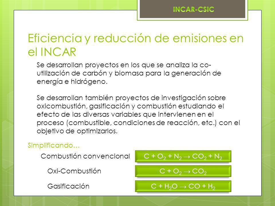 Eficiencia y reducción de emisiones en el INCAR Se desarrollan proyectos en los que se analiza la co- utilización de carbón y biomasa para la generaci