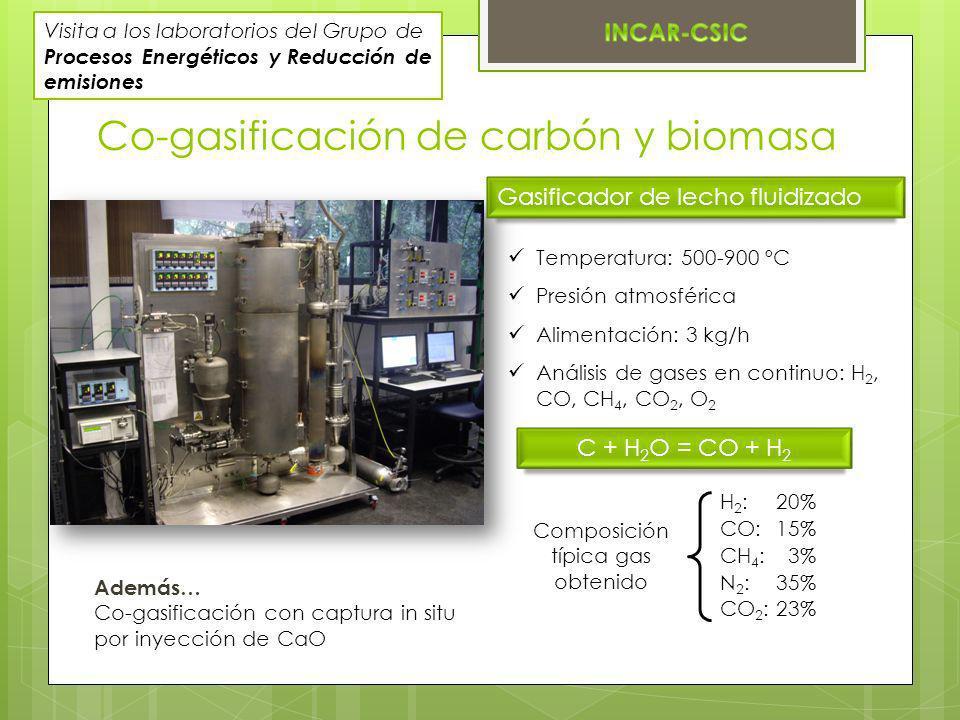 Co-gasificación de carbón y biomasa Gasificador de lecho fluidizado Temperatura: 500-900 ºC Presión atmosférica Alimentación: 3 kg/h Análisis de gases en continuo: H 2, CO, CH 4, CO 2, O 2 Composición típica gas obtenido H 2 :20% CO:15% CH 4 : 3% N 2 :35% CO 2 :23% C + H 2 O = CO + H 2 Además… Co-gasificación con captura in situ por inyección de CaO Visita a los laboratorios del Grupo de Procesos Energéticos y Reducción de emisiones