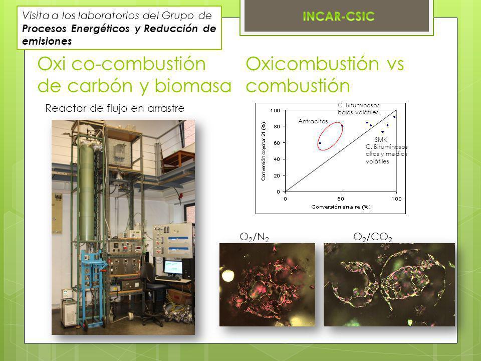 Oxi co-combustión de carbón y biomasa Reactor de flujo en arrastre SMK Antracitas C. Bituminosos bajos volátiles C. Bituminosos altos y medios volátil
