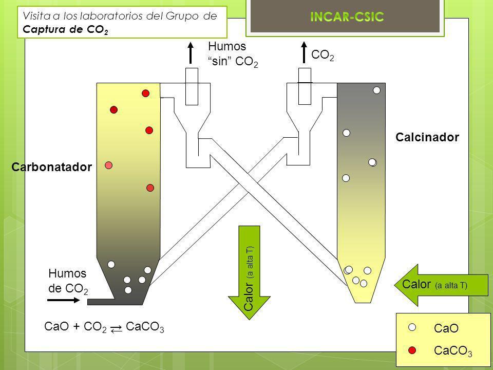 Calcinador CO 2 Humos sin CO 2 Carbonatador Humos de CO 2 CaO CaCO 3 Calor (a alta T) Visita a los laboratorios del Grupo de Captura de CO 2 CaO + CO