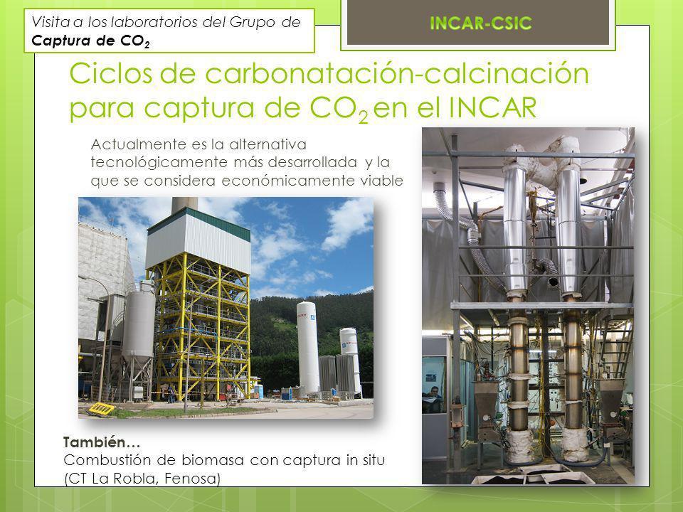 Actualmente es la alternativa tecnológicamente más desarrollada y la que se considera económicamente viable Ciclos de carbonatación-calcinación para c
