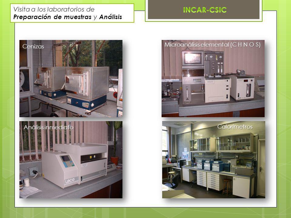 Visita a los laboratorios de Preparación de muestras y Análisis Cenizas Microanálisis elemental (C H N O S) Análisis inmediato Calorímetros