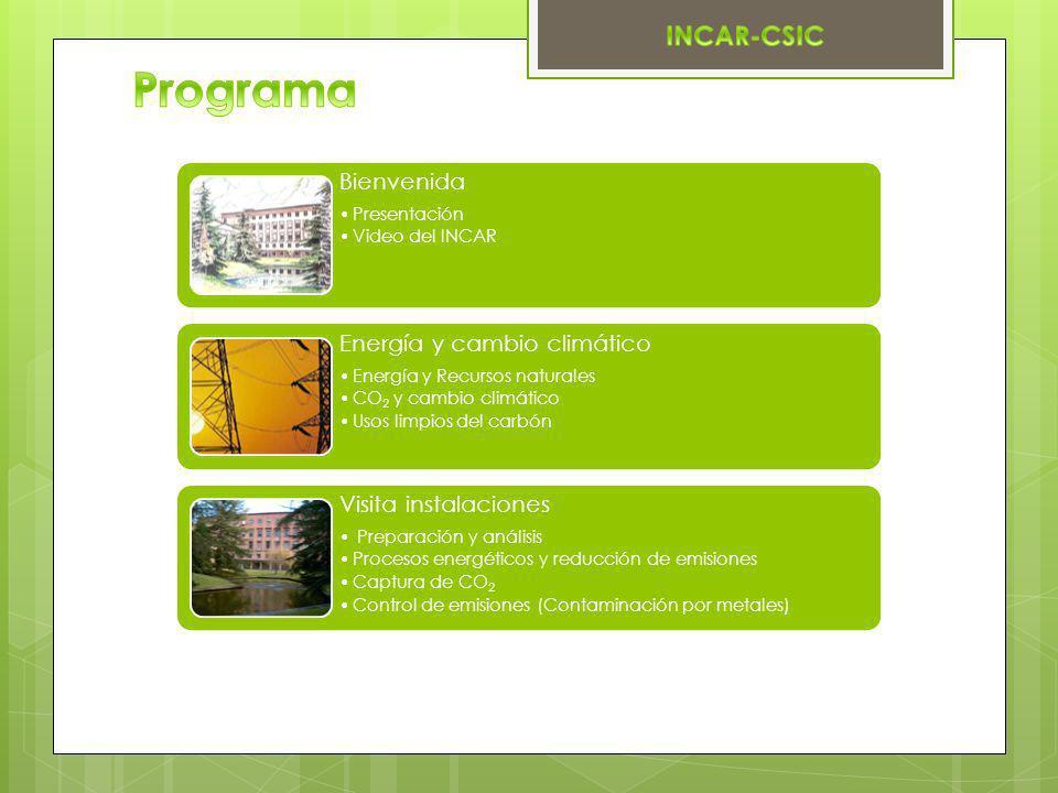 Bienvenida Presentación Video del INCAR Energía y cambio climático Energía y Recursos naturales CO 2 y cambio climático Usos limpios del carbón Visita