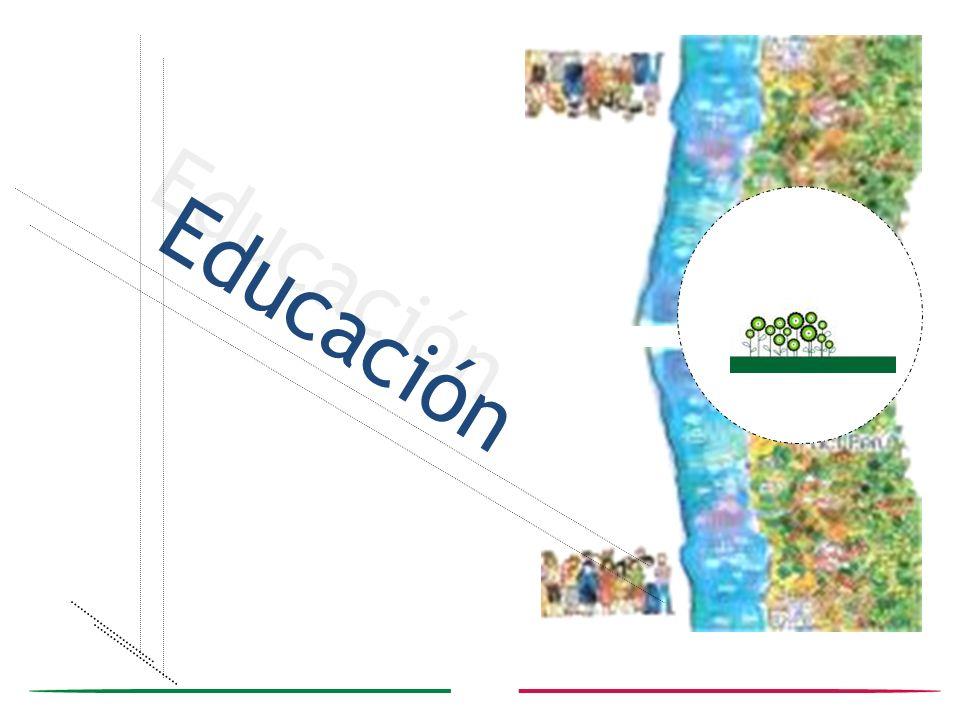 Invisibilidad en la escuela Barreras contra la Educación inclusiva