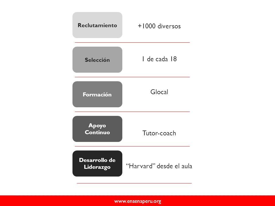 www.ensenaperu.org Apoyo Continuo Formación Selección Reclutamiento Desarrollo de Liderazgo +1000 diversos 1 de cada 18 Glocal Tutor-coach Harvard desde el aula