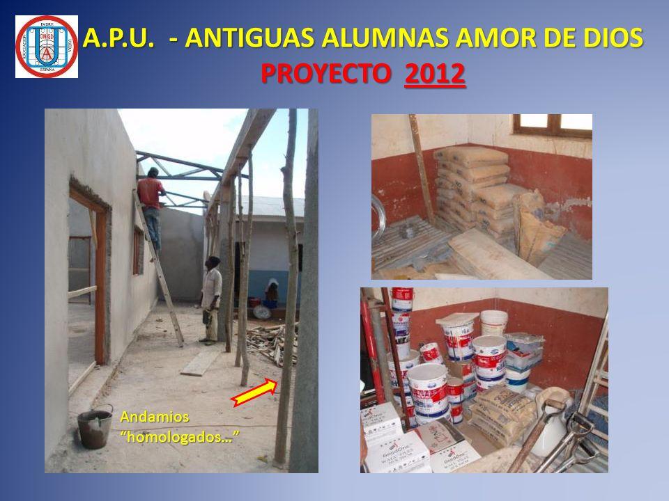 Andamios homologados… A.P.U. - ANTIGUAS ALUMNAS AMOR DE DIOS PROYECTO 2012