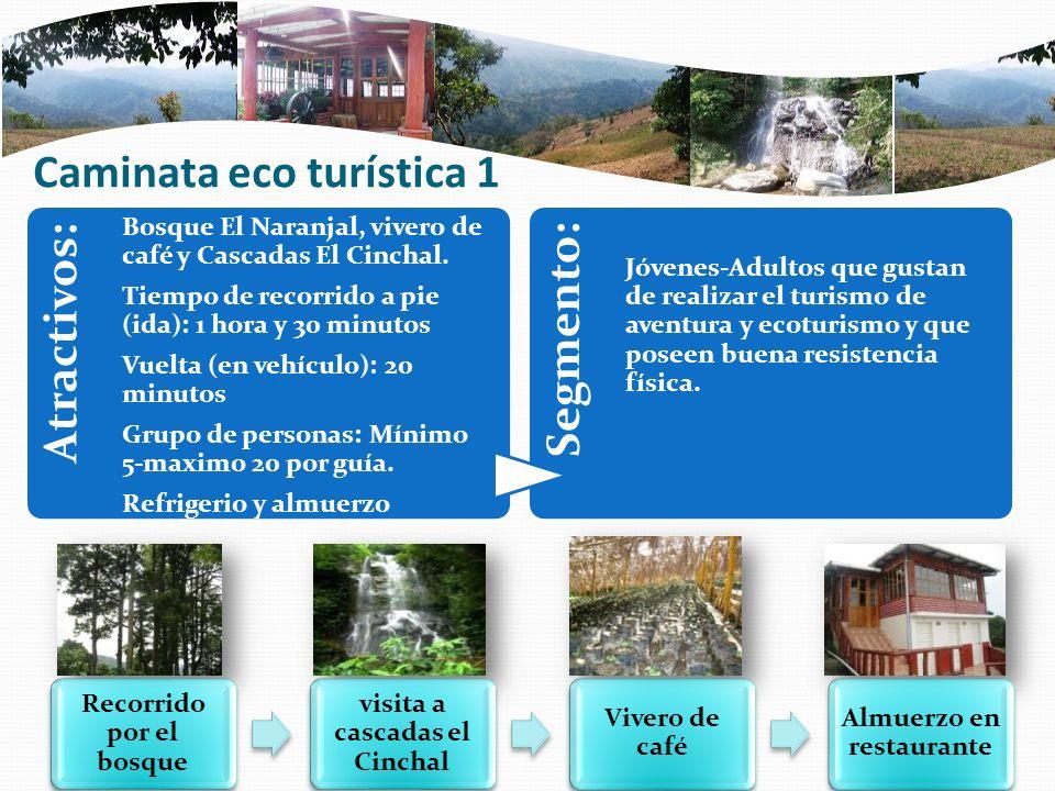 Caminata eco turística 1 Atractivos: Bosque El Naranjal, vivero de café y Cascadas El Cinchal. Tiempo de recorrido a pie (ida): 1 hora y 30 minutos Vu