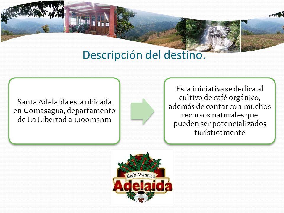 Descripción del destino. Santa Adelaida esta ubicada en Comasagua, departamento de La Libertad a 1,100msnm Esta iniciativa se dedica al cultivo de caf
