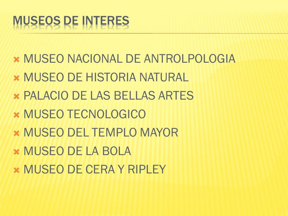 MUSEO NACIONAL DE ANTROLPOLOGIA MUSEO DE HISTORIA NATURAL PALACIO DE LAS BELLAS ARTES MUSEO TECNOLOGICO MUSEO DEL TEMPLO MAYOR MUSEO DE LA BOLA MUSEO