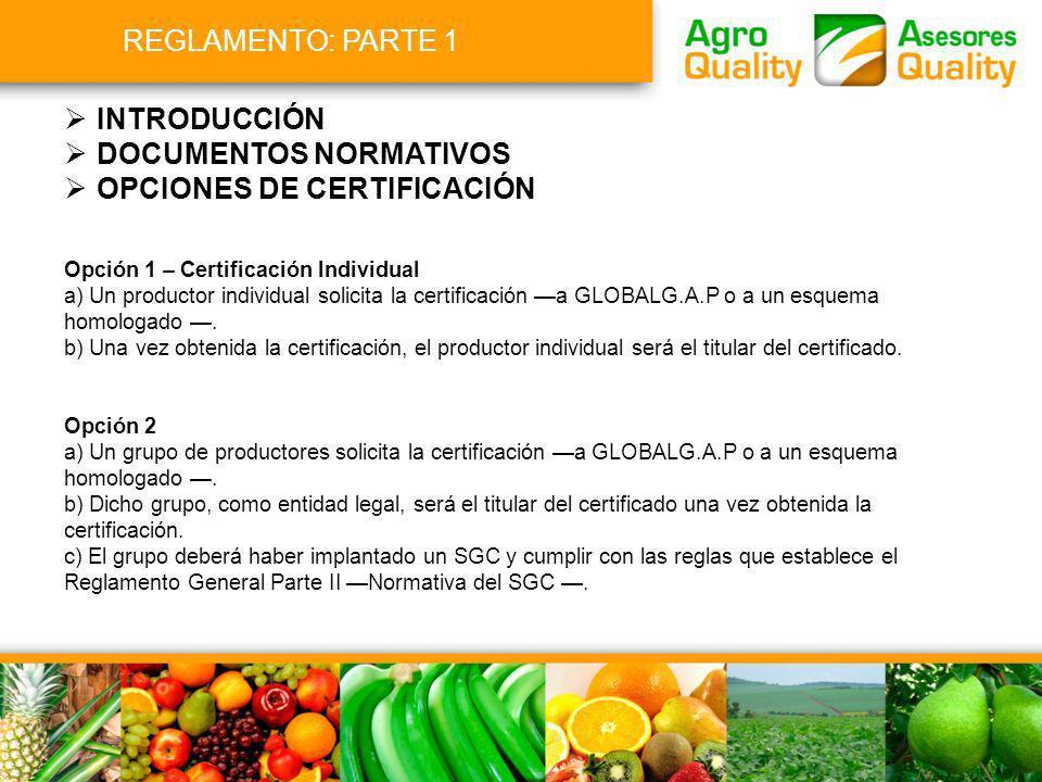 Opción 1 – Certificación Individual a) Un productor individual solicita la certificación a GLOBALG.A.P o a un esquema homologado. b) Una vez obtenida