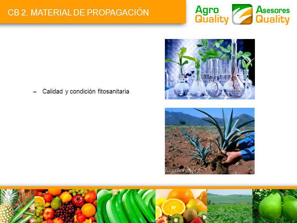 CB 2. MATERIAL DE PROPAGACIÓN –Calidad y condición fitosanitaria