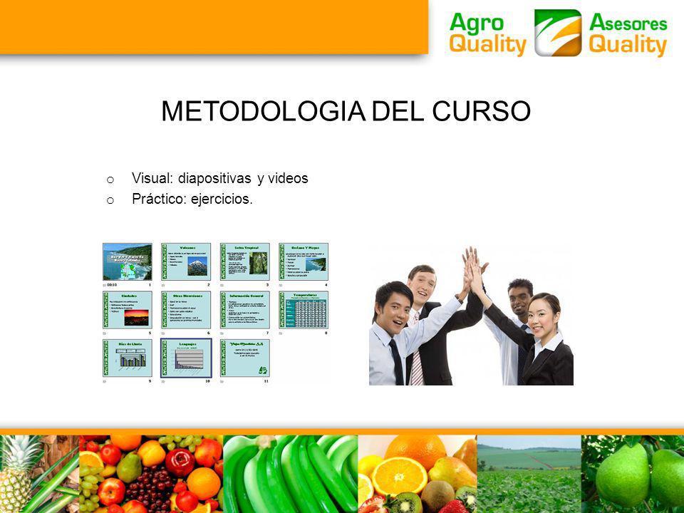 METODOLOGIA DEL CURSO o Visual: diapositivas y videos o Práctico: ejercicios.