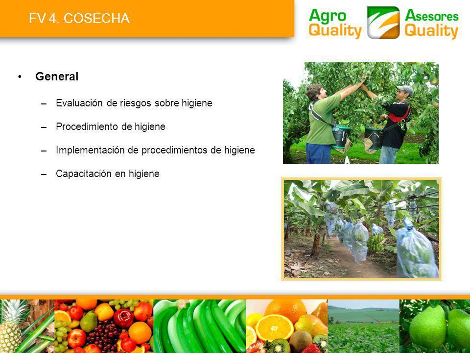 FV 4. COSECHA General –Evaluación de riesgos sobre higiene –Procedimiento de higiene –Implementación de procedimientos de higiene –Capacitación en hig