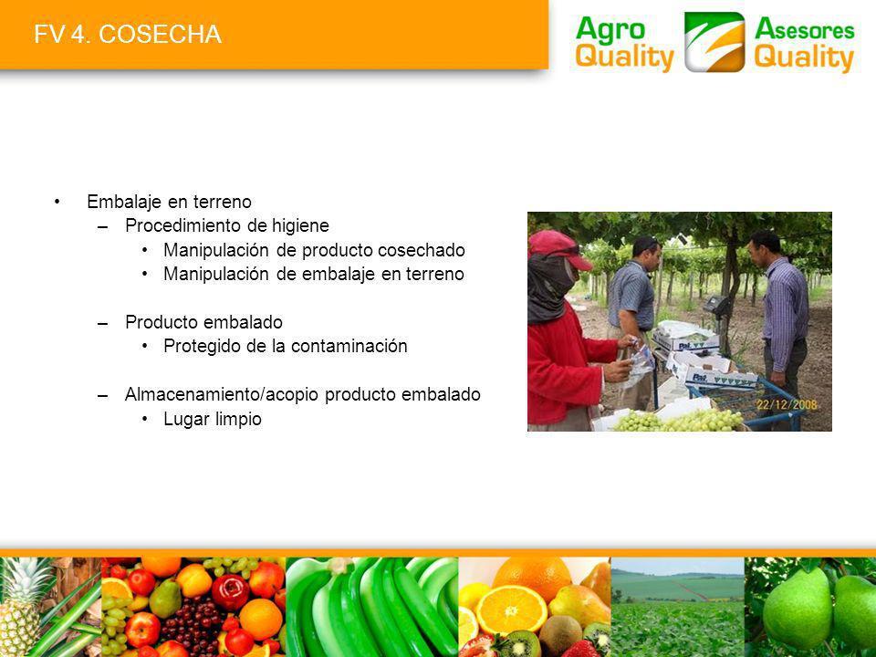FV 4. COSECHA Embalaje en terreno –Procedimiento de higiene Manipulación de producto cosechado Manipulación de embalaje en terreno –Producto embalado