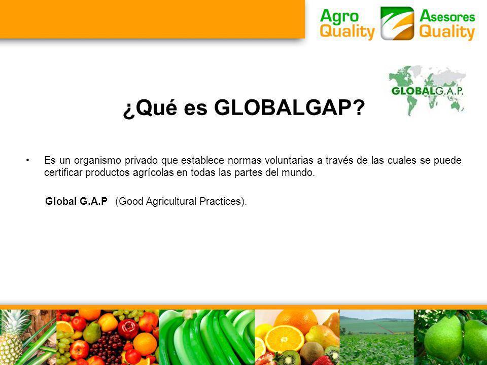 ¿Qué es GLOBALGAP? Es un organismo privado que establece normas voluntarias a través de las cuales se puede certificar productos agrícolas en todas la