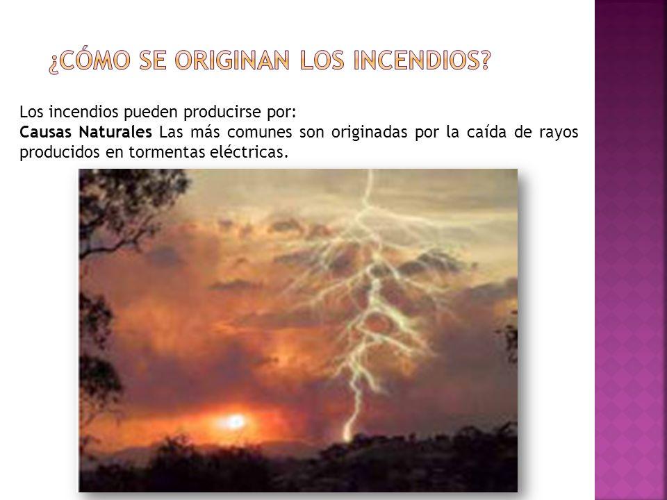 Los incendios pueden producirse por: Causas Naturales Las más comunes son originadas por la caída de rayos producidos en tormentas eléctricas.