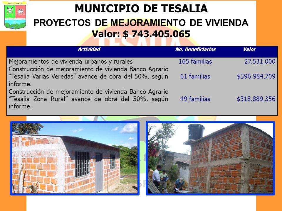 MUNICIPIO DE TESALIA PROYECTOS DE MEJORAMIENTO DE VIVIENDA Valor: $ 743.405.065 ActividadNo. BeneficiariosValor Mejoramientos de vivienda urbanos y ru