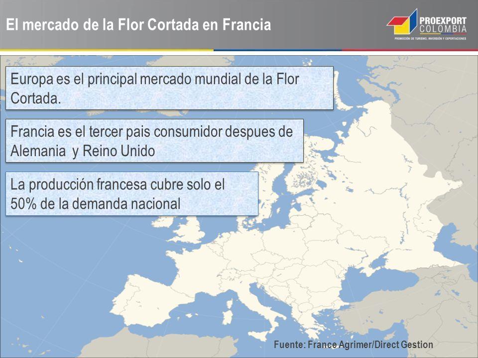 El mercado de la Flor Cortada en Francia Europa es el principal mercado mundial de la Flor Cortada. Francia es el tercer pais consumidor despues de Al