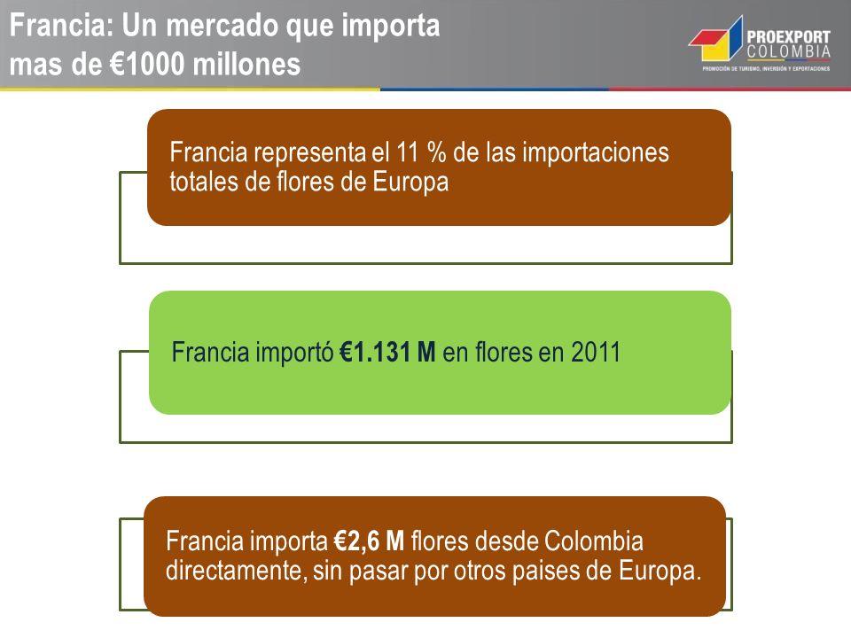 Francia: Un mercado que importa mas de 1000 millones Francia representa el 11 % de las importaciones totales de flores de Europa Francia importó 1.131