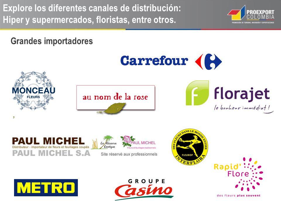 Explore los diferentes canales de distribución: Hiper y supermercados, floristas, entre otros., Grandes importadores