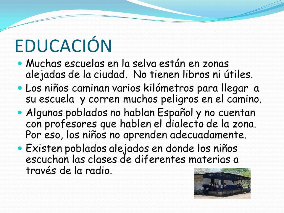 EDUCACIÓN Muchas escuelas en la selva están en zonas alejadas de la ciudad. No tienen libros ni útiles. Los niños caminan varios kilómetros para llega