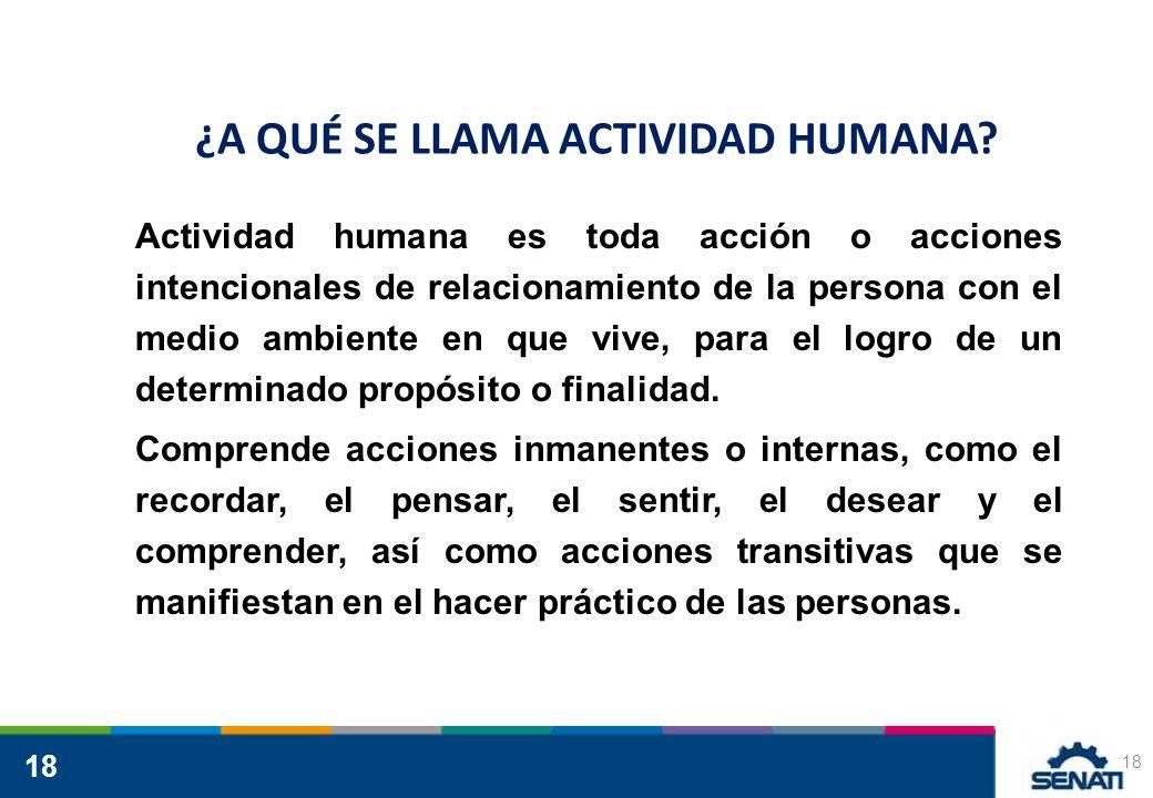18 ¿A QUÉ SE LLAMA ACTIVIDAD HUMANA? Actividad humana es toda acción o acciones intencionales de relacionamiento de la persona con el medio ambiente e
