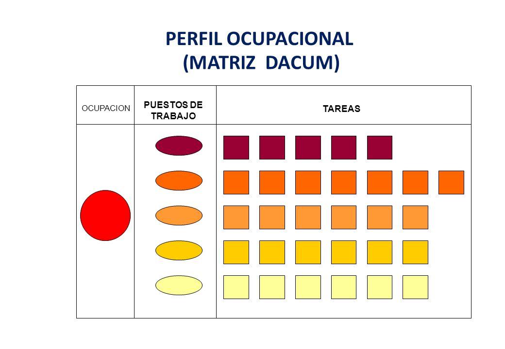 PERFIL OCUPACIONAL (MATRIZ DACUM) OCUPACION PUESTOS DE TRABAJO TAREAS