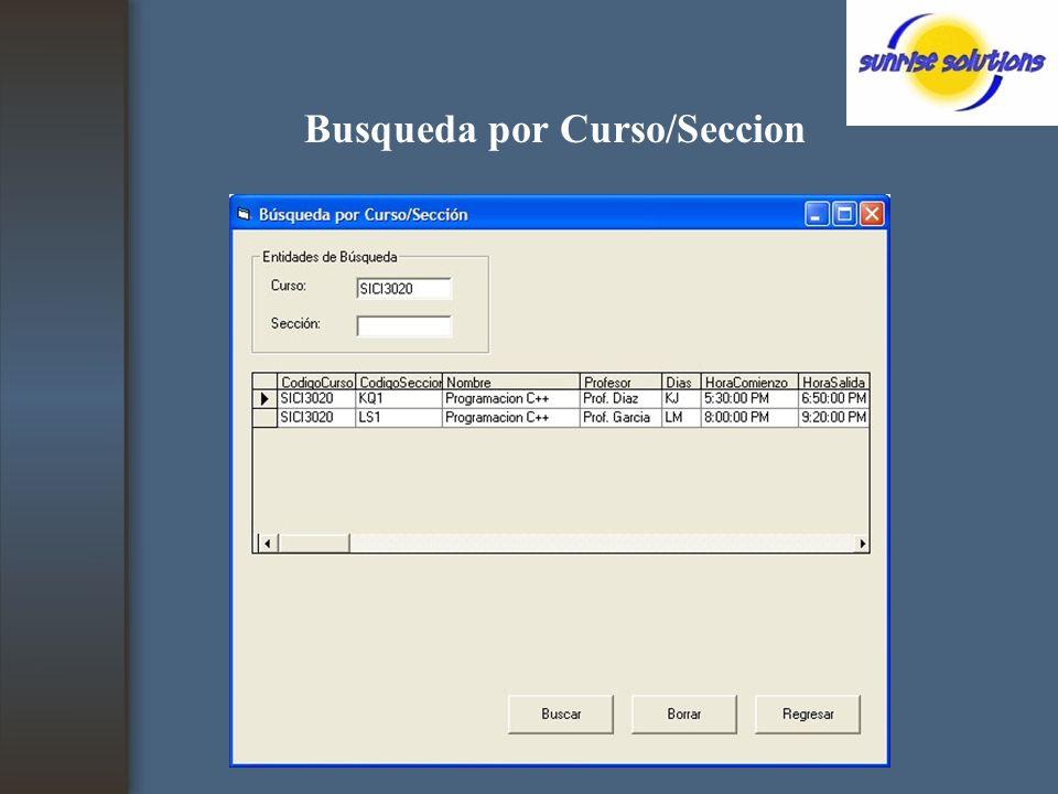 Busqueda por Curso/Seccion