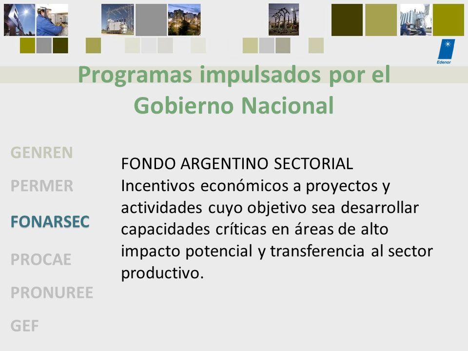 Programas impulsados por el Gobierno Nacional GENREN PERMER FONARSEC PROCAE PRONUREE GEF FONDO ARGENTINO SECTORIAL Incentivos económicos a proyectos y