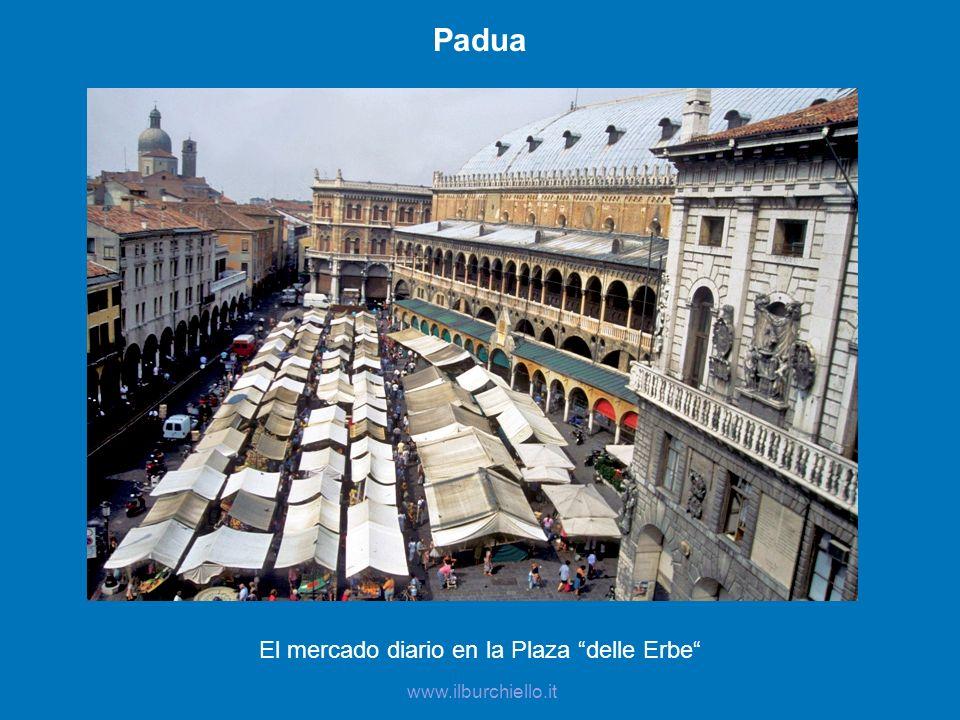 Padua El mercado diario en la Plaza delle Erbe www.ilburchiello.it