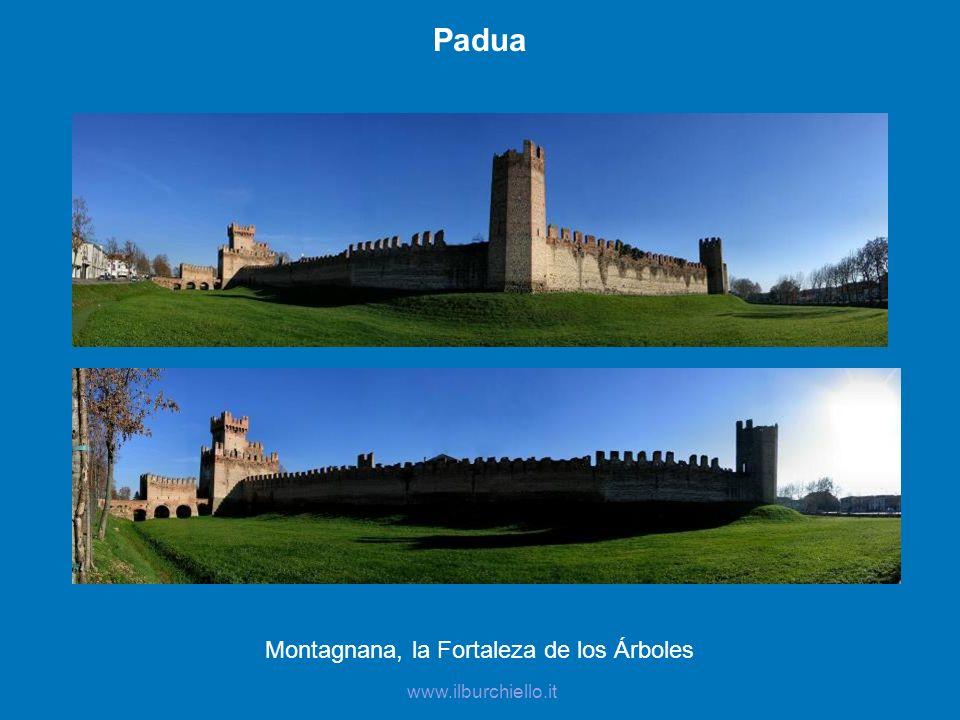 Padua Montagnana, la Fortaleza de los Árboles www.ilburchiello.it