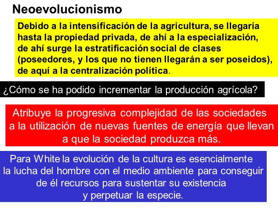 Neoevolucionismo Debido a la intensificación de la agricultura, se llegaría hasta la propiedad privada, de ahí a la especialización, de ahí surge la e