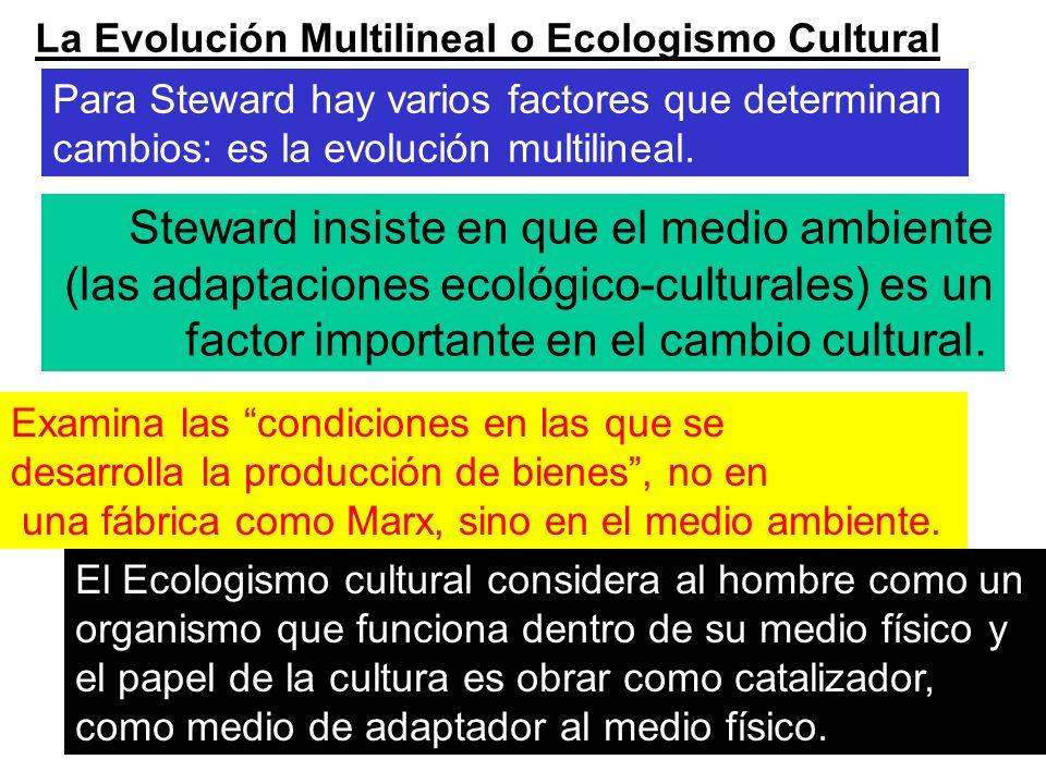 La Evolución Multilineal o Ecologismo Cultural Para Steward hay varios factores que determinan cambios: es la evolución multilineal. Steward insiste e