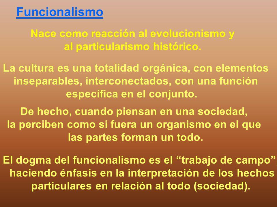 Funcionalismo Nace como reacción al evolucionismo y al particularismo histórico. La cultura es una totalidad orgánica, con elementos inseparables, int
