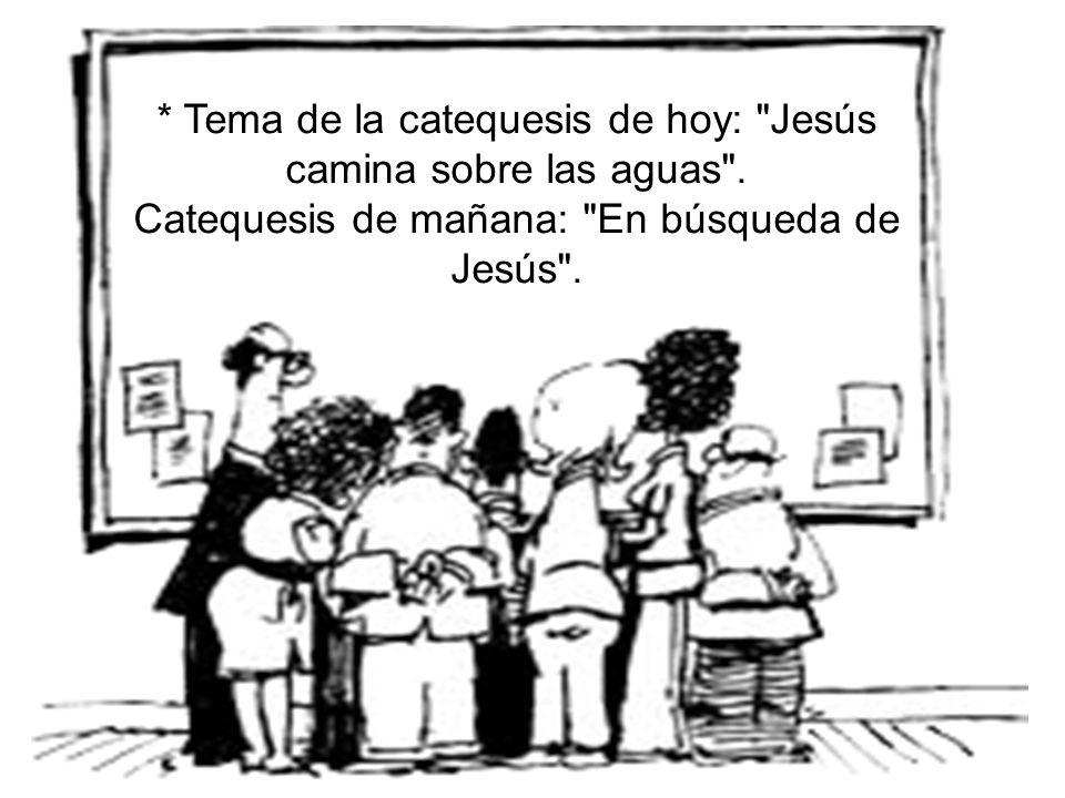 * Tema de la catequesis de hoy: Jesús camina sobre las aguas .