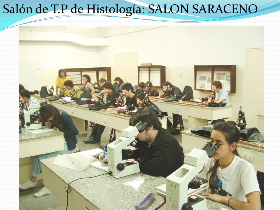 Salón de T.P de Histología: SALON SARACENO