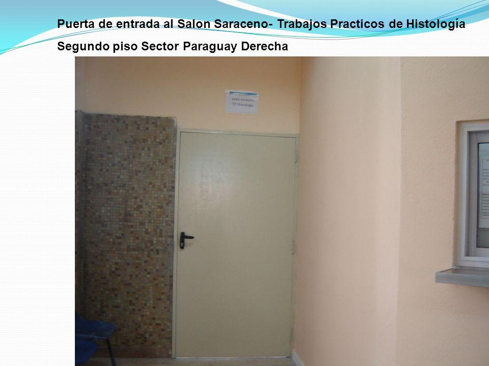 Puerta de entrada al Salon Saraceno- Trabajos Practicos de Histología Segundo piso Sector Paraguay Derecha